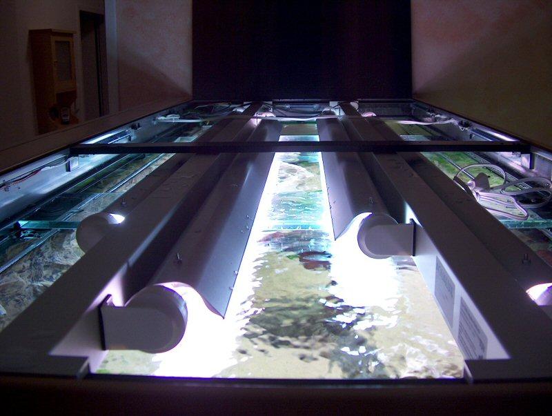 Die technik von meinem 1000 liter becken for Aquarium abdeckung