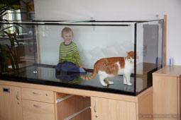 nimmervoll homepage riff aquarium meerwasser 1120 liter aufbau. Black Bedroom Furniture Sets. Home Design Ideas