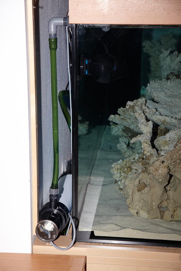 nimmervoll homepage riff aquarium meerwasser 1120 liter aufbau tagebuch. Black Bedroom Furniture Sets. Home Design Ideas