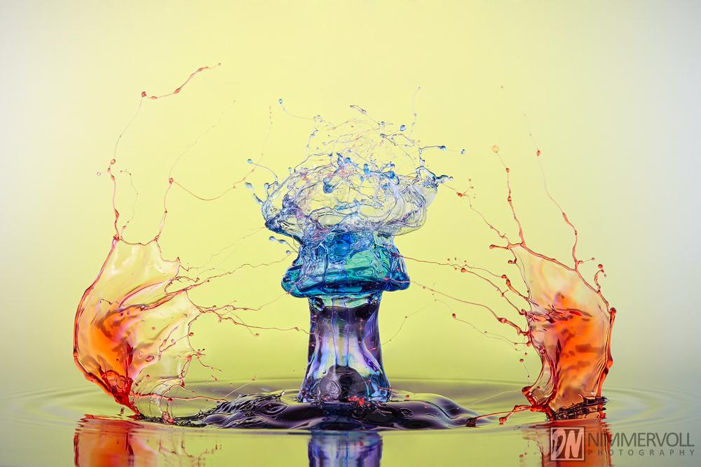 Liquid Art - Highend