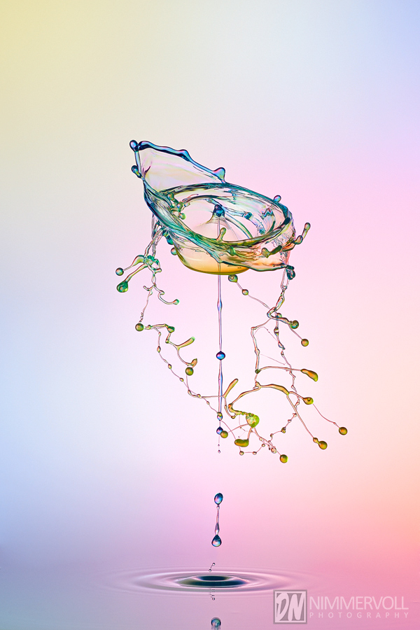 Workshop bei Daniel Nimmervoll - Liquid Art