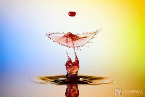 Liquid Art Bilder und Wassertropfen Highspeed Fotografie von Daniel Nimmervoll
