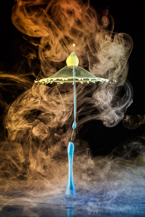 Liquid Art - Smoker
